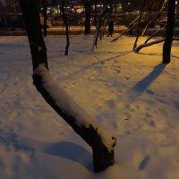 Учусь снимать вечерний свет :: Андрей Лукьянов