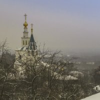 Зимний,туманный день :: Сергей Цветков