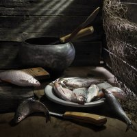 Рыбак про рыбу... :: Сергей Фунтовой