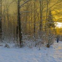Поздний зимний восход солнца :: Юрий Митенёв