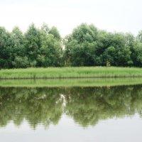 Утро, река Ай :: Татьяна Котельникова
