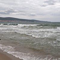 Девушка и море :: Сергей Григорьев