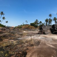 Во время отлива...Южное Гоа,Индия! :: Александр Вивчарик