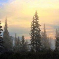 Утро туманное перед восходом :: Сергей Чиняев