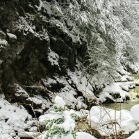 Во власти зимы :: Вячеслав Случившийся