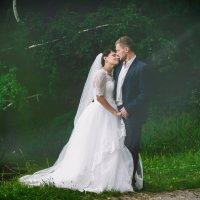 Счастливая пара :: Николай Позиненко