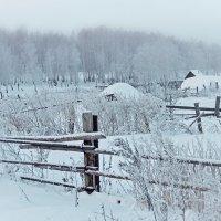 Зима нарисовала картину, а я её сфотографировала :: Галина Ильясова