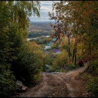 Городская окраина :: Алексей Патлах