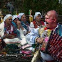Новый гармонист в деревне :: Владимир Дядьков