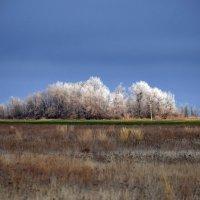 Мороз и солнце :: Александр Юдин