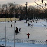 Зимние забавы :: OLLES