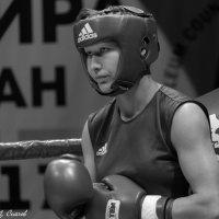 Бокс :: Дмитрий Сиялов