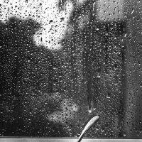 За окном.... :: Наталья Гашинская