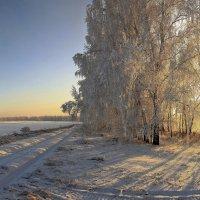 Иней декабря :: Сергей Жуков