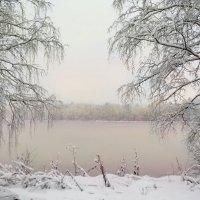 Всюду снег; кругом всё тихо; Зимним сном природа спит.. :: Алла Кочергина