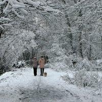 Однодневная зимняя сказка в Киеве :: Валентина Данилова
