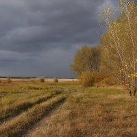 Осень... :: Владимир Мельнов