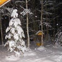 Зимний вечер на даче. :: Регина Пупач