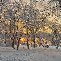 краски зимнего утра :: cfysx