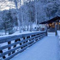 Морозный вечер в Белокурихе :: Алина Меркурьева
