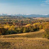 Осень... :: Аnatoly Gaponenko
