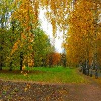 Осенними дорожками. :: Александр Атаулин