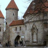 Tallinn :: Caren Yvonne Rikkilä
