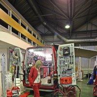 Хозяйка супер  мастерской  на  колёсах что  то заскучала! :: Виталий Селиванов