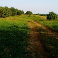 Лето в деревне :: Оксана Баллыева