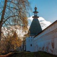 У монастырских стен :: Alexander Petrukhin