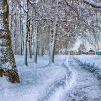 Зима в городе. :: Сергей