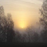 Туманный рассвет :: Татьяна Сапрыкина
