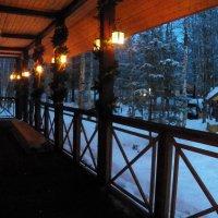 Новогодняя подсветка :: Регина Пупач