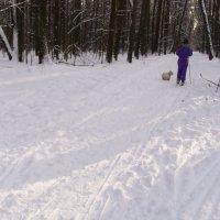 Все на лыжи :: Анна Воробьева