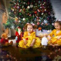 новогодняя сказка :: Tanya Petrosyan