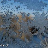 Узоры на стекле :: OLLES