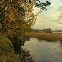 Осенняя ,лирическая... :: Наталья