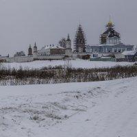 Бобренев монастырь в Коломне :: Александра