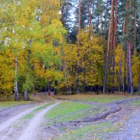 Дорога в осень открыта . :: Валентина ツ ღ✿ღ