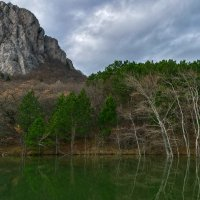Зеленый пруд :: Игорь Кузьмин