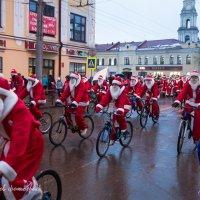 Дед Морозы за подарками рванули,снега нет вот на велосипедах! :: Горелов Дмитрий