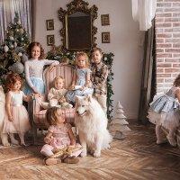 Новогоднее настроение!) :: Наталья Мирошниченко