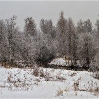 Первый снег :: Александр Максимов