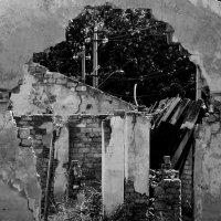 Черно-белый реализм. :: Sergii Ruban