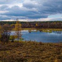 Лесное озеро :: Евгений Карский