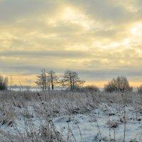 Зимний вечер в Питере :: Николай Танаев