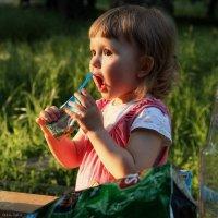 Молодое поколение выбирает сок :: Анатолий Шулков