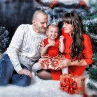 Новый год-семейный праздник :: Marya Matoshina