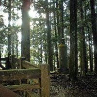 В  лесу у  святилища! :: Виталий Селиванов