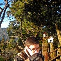 Хорош  крепкий чай в  горах! :: Виталий Селиванов